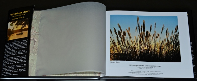 "Inside cover, ""Morning Grasses,"" from Chesapeake Views-Catching the Light"