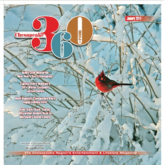 """Winter Cardinal,"" the cover image on Chesapeake 360, for January 2014"