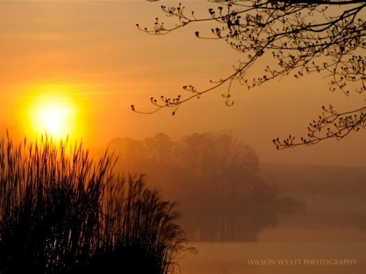 "First Sunrise in Spring, by Wilson Wyatt, from ""Chesapeake Views - Catching the Light"""